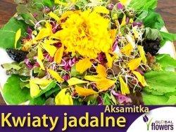 Kwiaty jadalne - Aksamitka rozpierzchła mieszanka nasion 1g