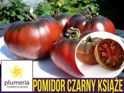 Pomidor CZARNY KSIĄŻE Noire de Crimee (Lycopersicon Esculentum) nasiona 0,1g