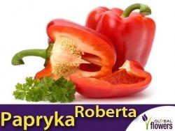 Papryka Czerwona Słodka ROBERTA (Capsicum annuum) nasiona XXL 10g