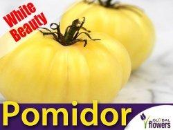 Pomidor gruntowy wysoki White Beauty (Solanum lycopersicum) 0,2 g