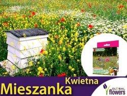 Kwietna łąka Mieszanka roślin miododajnych dzikich (jedno- i wieloletnie) nasiona 125g