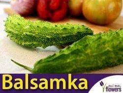 Balsamka Ogórkowata dla Cukrzyków (Momordica charantia)