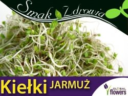 Nasiona na Kiełki - Jarmuż - (Acephala var. sabellica) 5 g