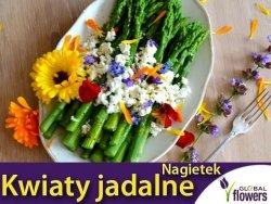 Kwiaty jadalne - Nagietek lekarski pomarańczowy nasiona 3g
