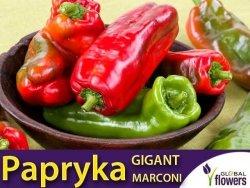 Papryka Słodka GIGANT MARCONI (Capsicum annuum) nasiona 10 szt