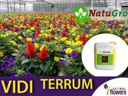 VIDI TERRUM nawóz pozwalający znacznie poprawić kondycję roślin 5 litrów