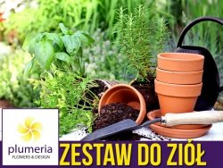Pakiet startowy do uprawy ziół  - zestaw 4 produktów do wysiewu i sadzenia ziół Z18