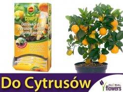 Odżywka do cytrusów i roślin egzotycznych COMPO 30ml