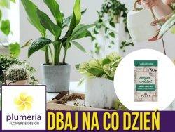 Dbaj na co dzień - 100% naturalny koncentrat z pokrzywy nawóz 50 ml