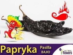 Papryka Czarna Ostra Pasilla Bajio Chili (Capsicum annuum)