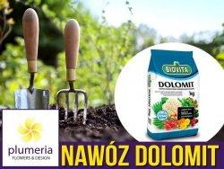 DOLOMIT Nawóz wapniowo-magnezowy 5kg
