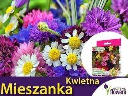 Kwietna łąka Mieszanka roślin o pachnących kwiatach nasiona 125g