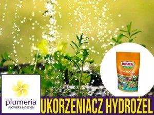 Substral Hydrożel UKORZENIACZ magiczna siła - sadzenie, przesadzanie, regeneracja - nawóz 100g