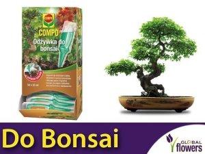 Odżywka do bonsai COMPO 30ml