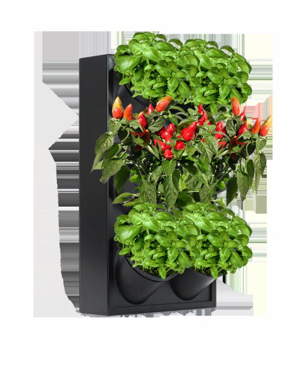 Ogród wertykalny pixel garden