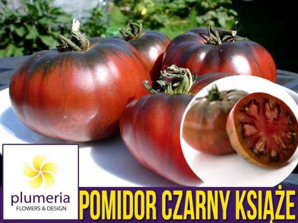 Pomidor CZARNY KSIĄŻE Noire de Crimee (Lycopersicon Esculentum) nasiona