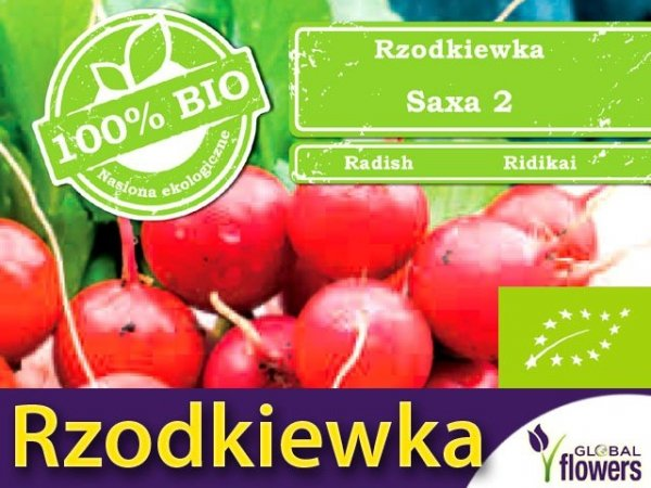 BIO Rzodkiewka Saxa 2 5g