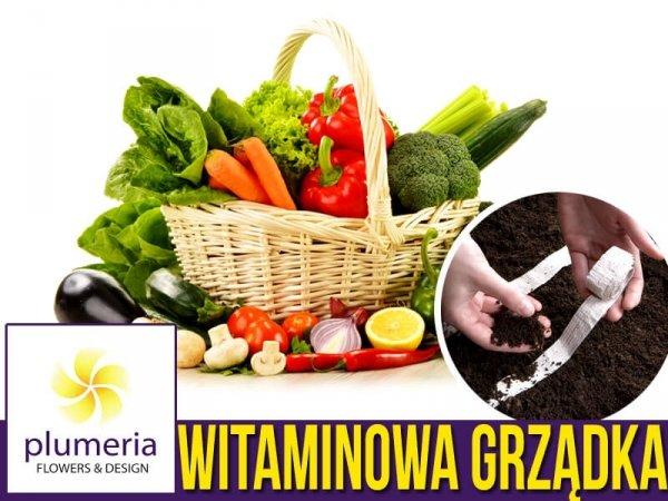 Ogródek warzywny - WITAMINOWA GRZĄDKA, zestaw nasion NA TAŚMIE 9x1,5 m - p72