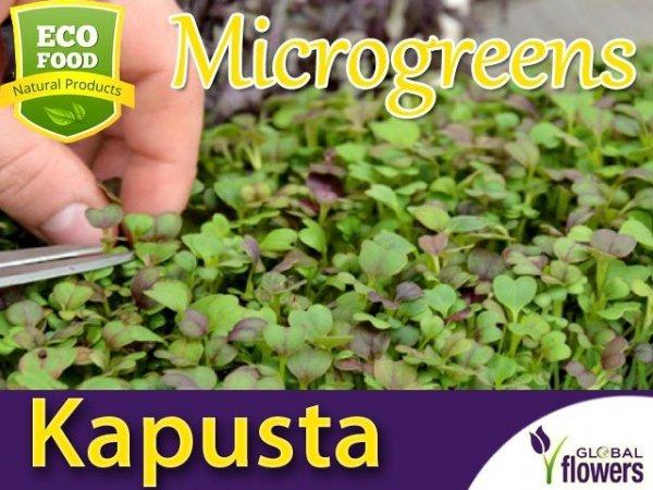 Microgreens - Kapusta - Mizuna mieszanka odmian 2g