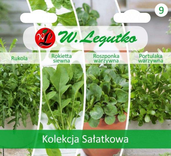 Warzywa liściaste na sałatki