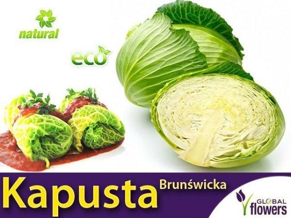 Kapusta Brunświcka - Najlepsza na gołąbki (Convar.Capitatan var. Alba) 2g