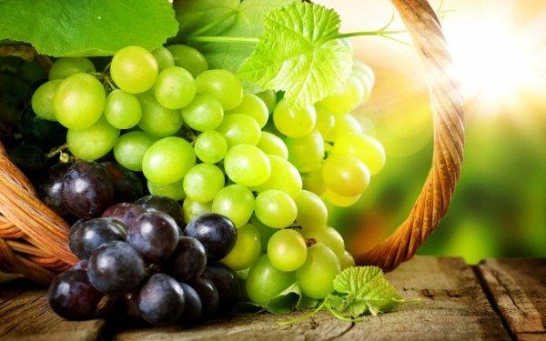 Mikoryza winorośl
