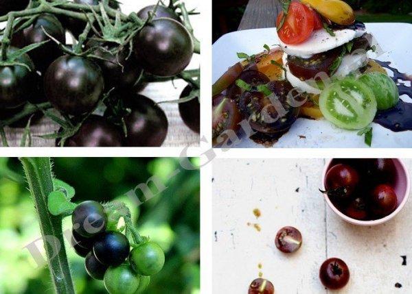 Oryginalne pomidorki w odcieniu czarnym