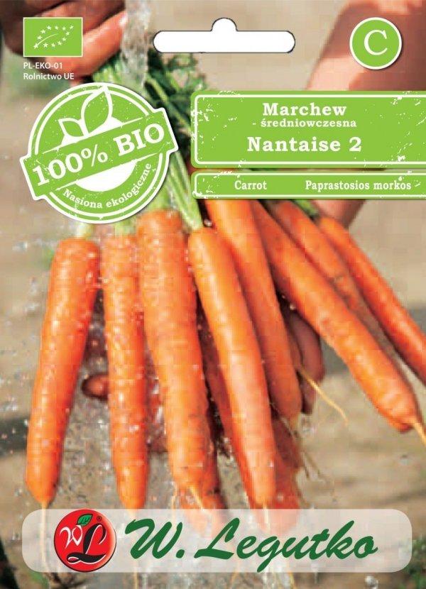 Ekologiczna uprawa marchwi