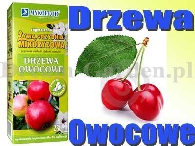 Mikoryza Grzybnia do drzew owocowych 250ml