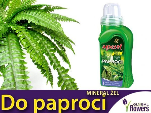 Agrecol Nawóz Mineral Żel do paproci 0,25l