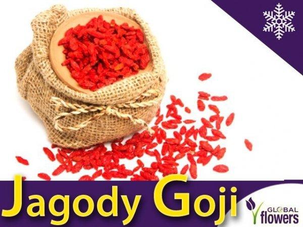 Jagody Goji  (Lycuim chinensis)