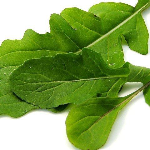 Baby Leaf Rokietta siewna (Eruca sativa) 2g