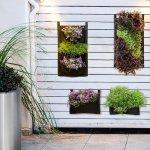 Pomysł na zieloną ścianę - donice kieszeniowe