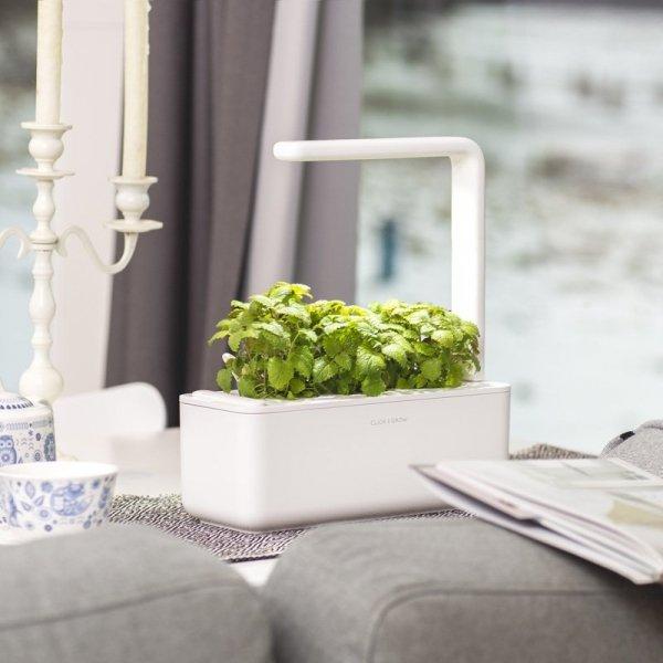 Doniczki Smart Garden będą troszczyć się o twoje zioła oraz warzywa, nawet gdy jesteś na wakacjach