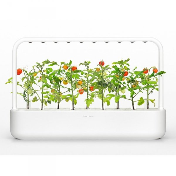 Doniczki Smart Garden to przełom w uprawie ziół i warzyw