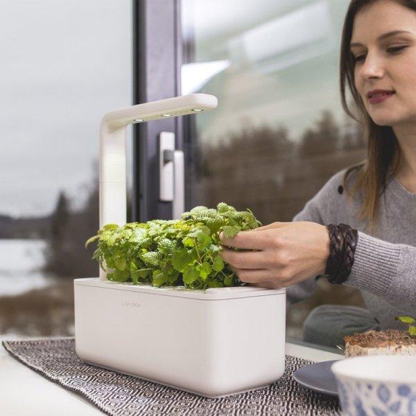 Smart Garden to idealna propozycja na hodowlę poziomek, bazyli, pomidorków koktailowych i wielu innych