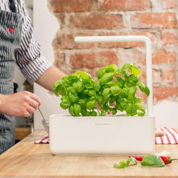 Smart Garden to idealny pomysł na domowy ogród z pysznymi jadalnymi roślinami
