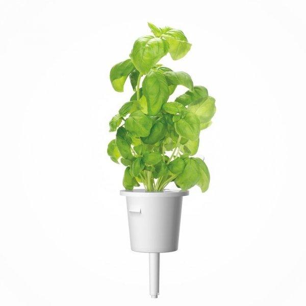 Nowoczesne doniczki inteligentne na kapsułki roślinne