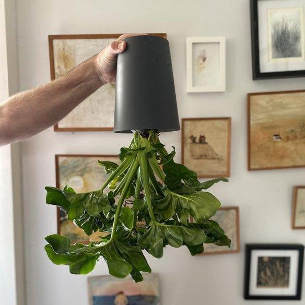 Boskke Sky Planter wisząca doniczka Recycled Large Czarna