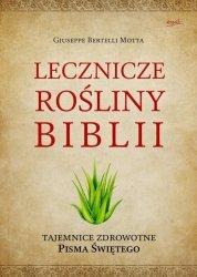 Lecznicze rośliny Biblii