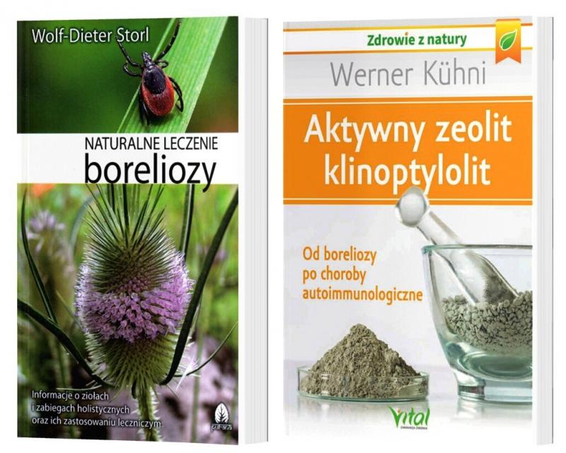 Klinoptylolit minerał dla zdrowia od boreliozy po choroby autoimmunologiczne