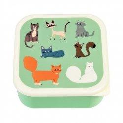 Rex, lunch box, 3szt, kotki nine lives