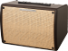 Ibanez T30II  Troubadour combo akustyczne