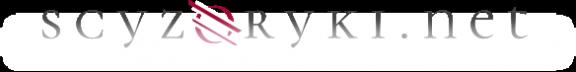 Victorinox - Dystrybutor, sklep on-line