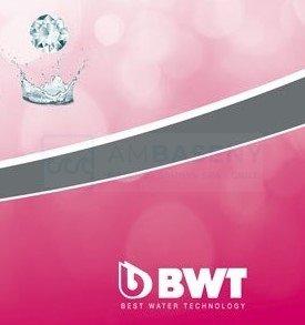 Siatka do czyszczenia dna basenu BWT