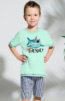 Taro Franek 392 '18 piżama
