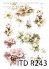 drobne kwiatki, kwiatki, gałązki,gałązkami w kwiatach, R243