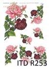 kwiaty, kwiat, róża, róże, różowe róże,  bordowe róże, R253