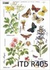 łąka, rośliny, motyl, motyle,  jaskółcze ziele, szałwia, dzika róża, kwiat, kwiaty, zioła, ziółka, R405