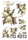 kwiaty, kwiat, liście, białe róże, róża, róże, R252